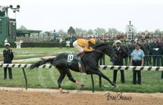 SEATTLE SLEW'S son SWALE storming to a resounding victory at the 1984 Kentucky Derby on May 5 1984. Swale also won the Belmont Stakes in equally dominant fashion.