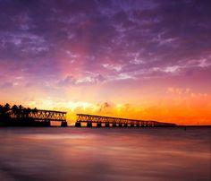 マイアミの絶景 - Google 検索