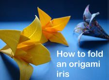 How to fold an origami Iris by Jason Milner
