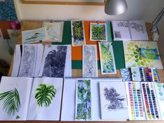 What's on my drawing board, March 017 2017: Top row: Bird studies of a Tern & Sulphur-crested Cockatoo. Watercolour leaf studies. Scrapbook with architecture illustration examples. Middle row: Tropical Palm House sketch design (centre of board) in ink pen. Green leaf pattern experiments & cow parsley doodles. Prima paints. Bottom row: Watercolour leaf studies, colour wash on a copy of the inked Palm House sketch using a limited colour palette. Palms from an old sketchbook Cotman…