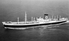 """SS Auckland Star, built by Cammell Laird & Co, Birkenhead for Blue Star, completed 10/58. The last of the 4 """"Dominion Boats"""" built in 50s. Took so long building as HMS Ark Royal was on adjacent slip & given priority. GWT 11,799t, 573ft long, 73ft beam 31ft draught. Her 2 steam turbines powered a single screw. This refrigerated cargo ship was used on the """"Colony Run"""".Normally general cargo down, then Lamb and dairy products from New Zealand on return or Apples from Tasmania. Scrapped '78."""