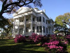 Stanton Hall, known as 'Belfast', is an Antebellum Classical Revival mansion in Natchez, Mississippi built during 1851-1857 for Frederick Stanton, a cotton broker.  The house was declared a National Historic Landmark in 1974