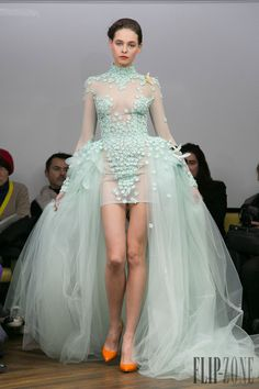 Tony Yaacoub Frühjahr/Sommer 2014 - Couture - http://www.flip-zone.de/fashion/couture-1/independant-designers/tony-yaacoub-4462