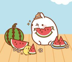 Molang sunny day watermelon nosh.