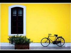 Owing to its history, Pondicherry has remarkable architecture with Tamil-style, French-style, and Franco-Tamil style houses.
