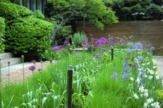Toronto Gardens: Cool designs with ornamental grasses