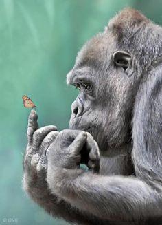 Als jij niet blij bent met je leven, bedenk dat er altijd iemand blij is, omdat jij bestaat.