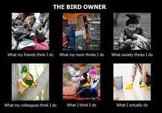 The Bird Owner