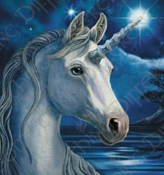 Unicorns are beautiful. <3  So cute! <3  Visit our website www.rainbows-n-unicorns.com Join us on Facebook! https://www.facebook.com/rainbows4unicorns/