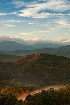 Smokey Mountains of Tennessee    My parents and grandparents took us there many times.....the bears were awesome!