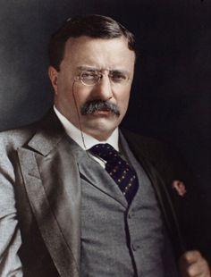 Theodore Roosevelt, Historian, Gentleman, Presidents, United States, Mens Fashion, American, Wall, Style