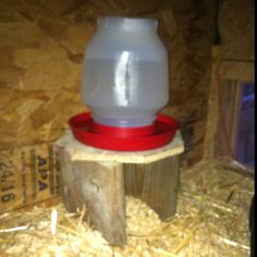Water stand I made for the girls.