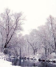 Winter nature, Slovakia