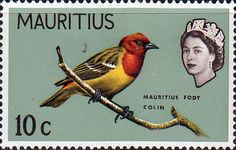 Mauritius 1965 SG 321 Mauritian Fody Bird Fine Mint SG 321 Scott 280 Other Indian Ocean Stamps Here
