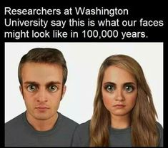 Human Evolution, University Of Washington, Research, Shit Happens, Face, Aliens, Weird, Search, Washington University