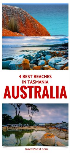 4 best beaches in Tasmania. Looking for a fabulous beach? In Tasmania beaches are wild and beautiful. Amazing Destinations, Travel Destinations, Tasmania Travel, Places To Travel, Places To Visit, Australia Travel Guide, Island Beach, Travel Memories, Travel Images