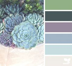 I love the succulent color palette. Beautiful!