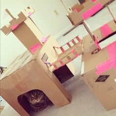 Home Made Cat Castle - Excellent use of time while recovering from dental surgery.