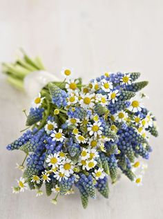 Daisy and Muscari bouquet #rockmyspringwedding @Rock My Wedding
