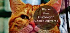 Planer słów kluczowych Google AdWords Jak wykorzystywać właściwe słowa