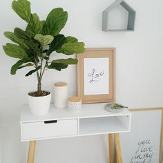 Weekly Sunday session at Kmart done √ hello new fiddle leaf fig 👋 #kmart #kmartaddictsunite #kmartstyling #home #myhome #instahome…