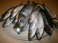 1000 images about foods avoid when you have gout on for Fish and gout