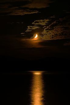 Orange moon by Takuma Higashide Moonlight Photography, Moon Photography, Landscape Photography, Moon Pictures, Pretty Pictures, Cool Photos, Beautiful Moon, Beautiful World, Orange Moon