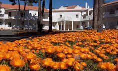 Promoção de São Valentim do Hotel Rural Monte da Lezíria a partir de 50€ 2PAX | Santiago do Cacém | Escapadelas ®