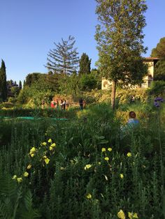 People experiencing the amazing Giardino Passerotti, headquarter of Passerotti Landscape Studio