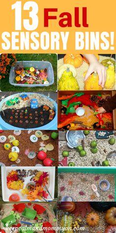 13 Fall Sensory Bins! Fall Sensory Activities For Kids, Sensory Bin Ideas For Toddlers, Sensory Activities For Preschoolers, Fine Motor Skills