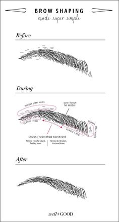 5 tricks for gorgeous eyebrows – Patricia P. 5 tricks for gorgeous eyebrows Well+Good has some tricks up their sleeves for achieving the perfect brows, and two of them are our Satin Matte Eyeshadow in Raven and our Natural Definition Eye Pencil. Beauty Make-up, Beauty Care, Beauty Skin, Beauty Hacks, Face Beauty, Beauty Advice, Beauty Tips And Tricks, Eyeliner, Eyebrow Makeup
