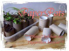 *Anleitung* PflanzTöpfchen aus Papprollen basteln (Paper Pots # 1) - - MissZuckerguss - kreatives aus recycelten materialien