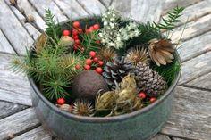 [ Holiday Potpourri: Citrus Potpourri, Pine Potpourri,  Spice Potpourri ] ~ from designsponge.com