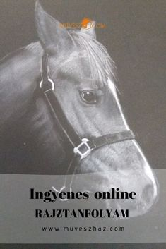 Hogyan lehet cukibbnál cukibb állatokat rajzolni? Ráadásul ingyen: Kattints! Techno, Horses, Animals, Animales, Animaux, Animal, Animais, Techno Music, Horse