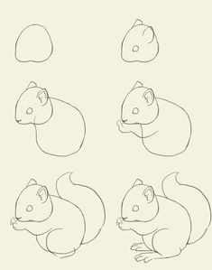 just in case, ya know, you ever need to draw a squirrel or somethin'