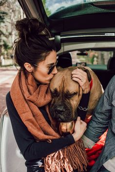 Dogs that are treated properly have the best temperaments and they hold no reservations in showing the love they have received. 5 Ways How To Show Your Dog Love Mastiff Breeds, Mastiff Puppies, Love Pet, I Love Dogs, Cute Dogs, Giant Dog Breeds, Giant Dogs, Wallpaper English, British Mastiff