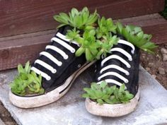 Don't know why but I like this a lot Give Your Old Shoes a New Chance And Turn Into a Wonderful And Unique Decoration For Your Garden Recycled Planters, Garden Planters, Succulents Garden, Garden Crafts, Garden Projects, Container Gardening, Gardening Tips, Organic Gardening, Gardening Supplies