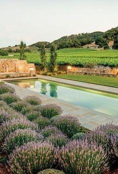Pool - Provence