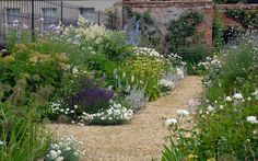 A family garden - Arne Maynard Garden Design