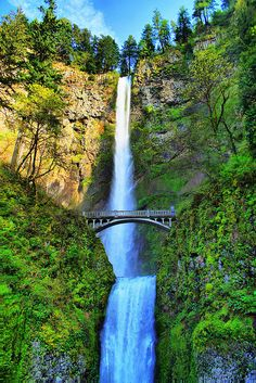 Multnomah Falls - Oregon - that's a nice shot of it