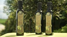 This extra virgin olive oil is harvested directly from My Olive Tree sponsored trees in the Kings' Valley of Israel. Gold Diy, Best High Fiber Foods, Daily Vitamins, Vitamin K, Marketing Techniques, Folic Acid, Vitamins And Minerals, Superfoods, Olive Oil
