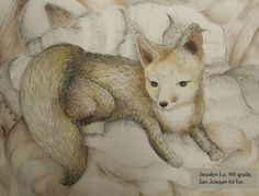 Art Contest Semifinalist, Grades 9-12: San Joaquin kit fox, Jessalyn Lu, Age 14, Studio of Fine Art