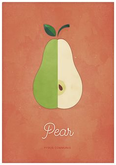 Pear orange, Natural History Fruit Inspired Minimalist Poster. - This is part of a series of posters inspired in Natural History engravings. The modern aesthetic of the poster make it a piece of art that fits well with any decoration style. Great for any room or space, perfect for those who love the lightness and simplicity of scandinavian design.