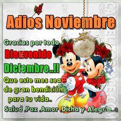 Gracias por todo #noviembre hola #diciembre