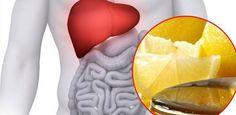 En plus decontribuer au processus de régénération du sang, le foie aide à renforcer et à stimuler la digestion des aliments dans l'organisme. Par ailleurs, il permet aussi de nettoyer le sang et élimine les toxines et impuretés qu'il contient. La meilleure façon de conserverla santé du foie est de le purifier chaque jour. Chaque …