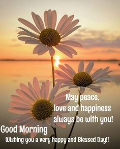 Good Morning Good Night, Good Morning Wishes, Morning Thoughts, Morning Quotes, Happy Day, Blessed, Mornings, Acre