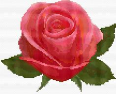 Rose Free Cross Stitch Pattern