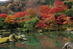 京都 天龍寺。曹源池庭園は開山夢窓疎石が作庭。回遊式庭園。