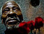 'Habib', 72, vendedor de flores (Drago/SelvaSP)