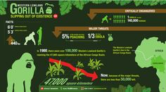 Cool use of Prezi as an infographic